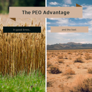 A wheat field on one side, and a desert on the other with title - The PEO Advantage In Good and Bad Times