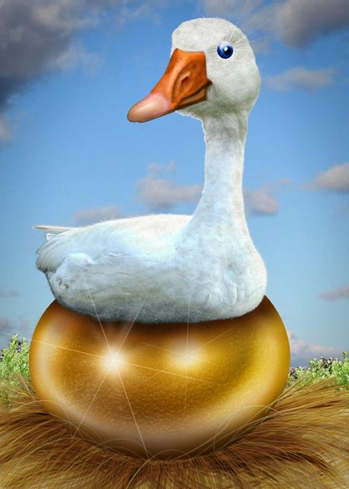 Goose sitting on golden egg in a nest