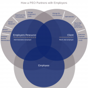 A model of how a PEO works.