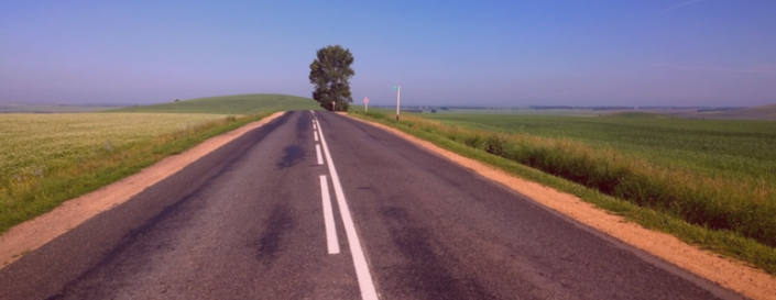 image of a two lane road in between two fields. there is a tree on the right side of the road