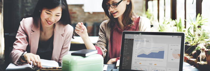 image of two women sitting at table and talking they have books and a laptop on the table in front of them. laptop shows graphs and charts on screen